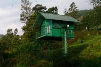 Camp Noel Munnar - Elevated Cottage